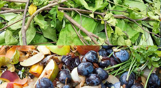 Déchets verts et déchets organiques