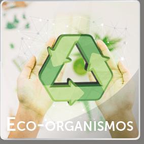 eco_organismos
