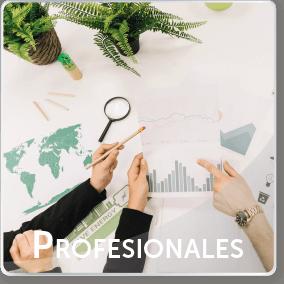 professionales