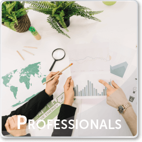 Professionals - Pena Group